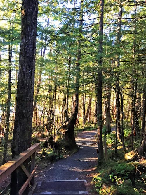 Butze Rapids Trails